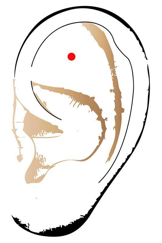 Eine Massage des Antistresspunktes am Ohr beruhigt und entspannt.